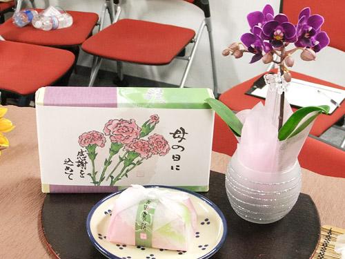 ウェルネス ちょこんと飾れるミニ胡蝶蘭&とぅるりん葛セット