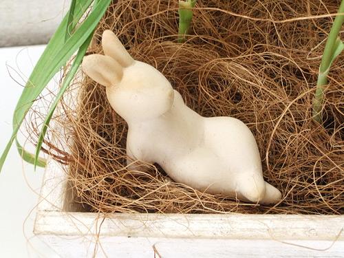 花くらす野菜くらす ニンニクの栽培キット ウサギのピック