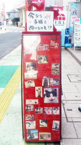 埼玉県・大宮の猫カフェ『猫家』看板