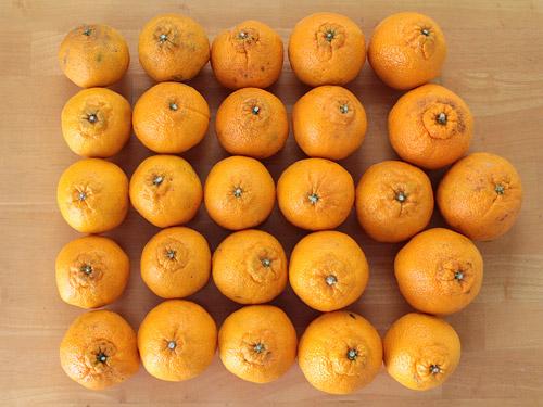 みさき果樹園 デコ媛(デコポン) 量