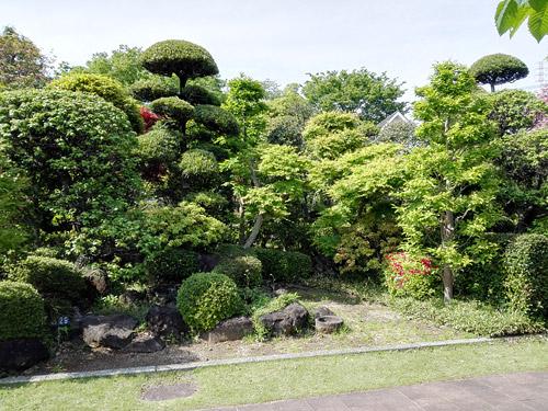 川口市立グリーンセンター モデル庭園1