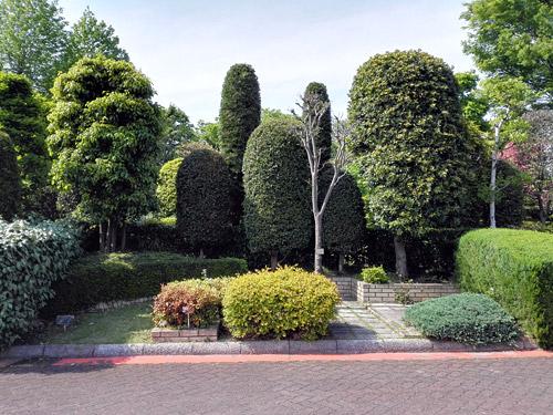 川口市立グリーンセンター モデル庭園2