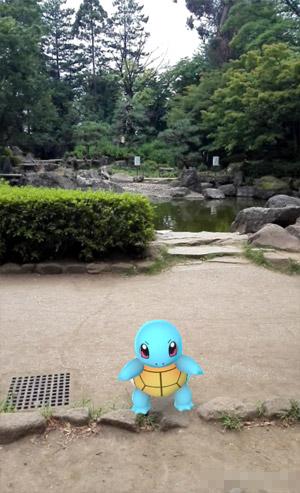 北浦和公園 ゼニガメ