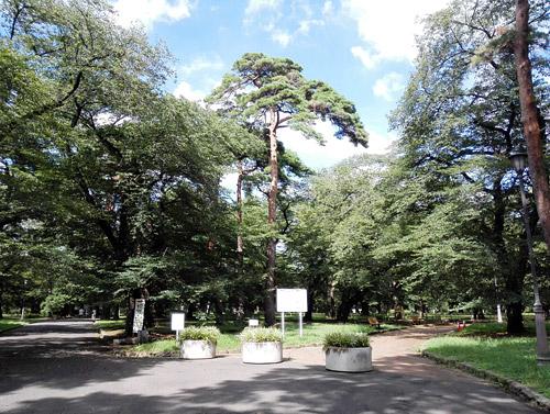 大宮公園 出入口5