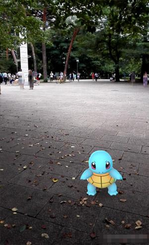 大宮公園 ゼニガメ