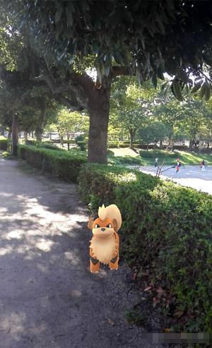 三橋総合公園 ガーディ