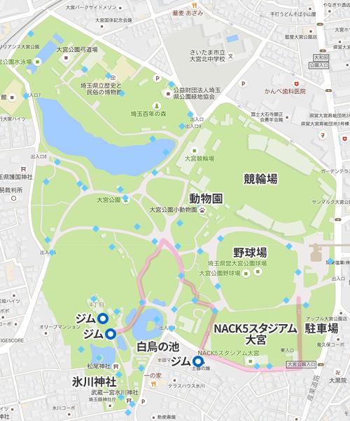 大宮公園 レアポケモンの出現場所と回り方
