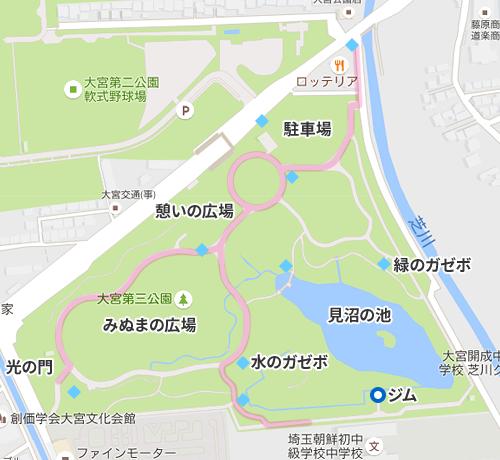 大宮第三公園 レアの出現場所と回り方